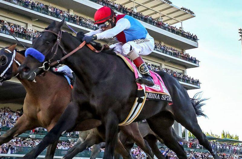 2021 Preakness Stakes Odds: Medina Spirit Favored