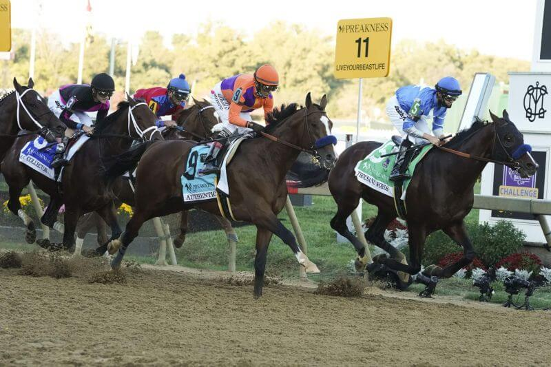 How To Bet - Make Smarter Preakness Stakes Wagers