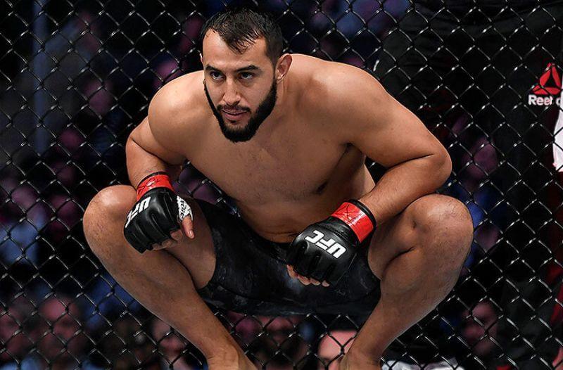 UFC Fight Night Reyes vs Prochazka Picks: Underdog Deserves Love