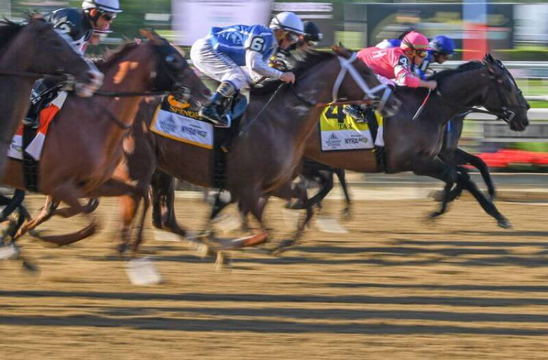 How To Bet - Belmont Stakes Best Bets and Trifecta Pick