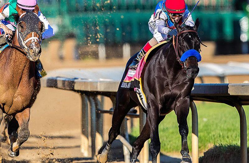 How To Bet - 2021 Preakness Stakes Odds: Medina Spirit Favored