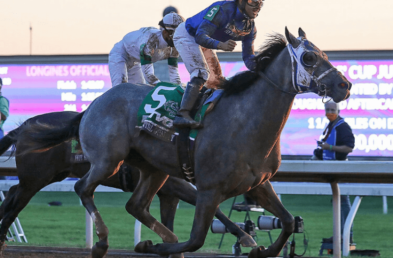 How To Bet - Kentucky Derby Action Report: Big Bets Keep Essential Quality the Favorite