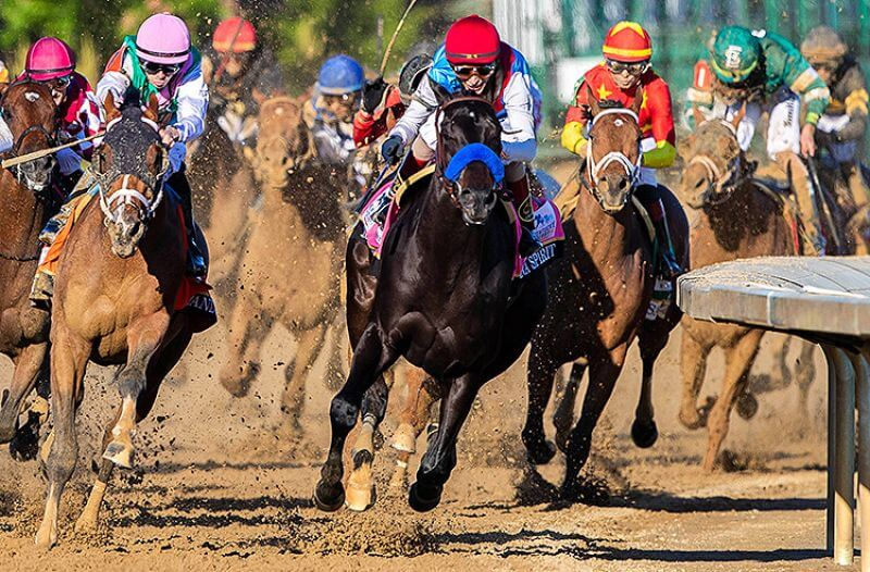 How To Bet - Preakness Stakes Best Bets and Trifecta Pick