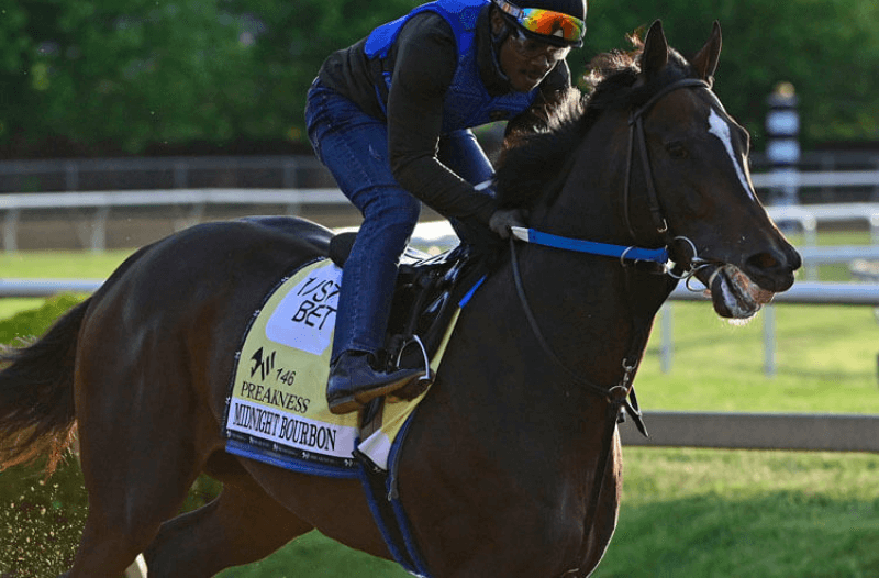 How To Bet - 2021 Preakness Stakes Odds: Medina Spirit, Midnight Bourbon Lead Way