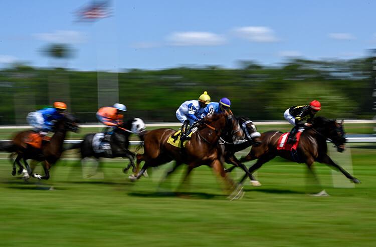 Best online betting for horse racing wertheim bettingen hafen hotel