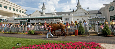 Kentucky Derby betting: Capping the three favorites