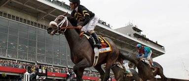 2013 Preakness Stakes: Oxbow shocks at 15/1