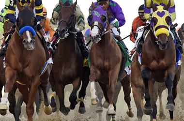 Vegas race books share what's killing horse racing and how