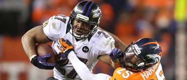 NFL futures book cheering against Niners, Ravens