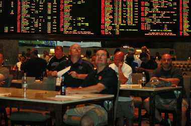 stations casino sports book odds consensus picks ncaaf
