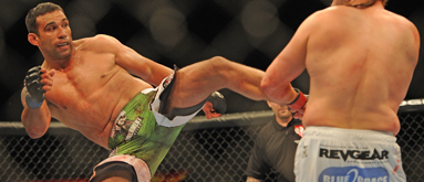 UFC on Fuel TV 10 betting: Nogueira vs. Werdum headed for KO finish