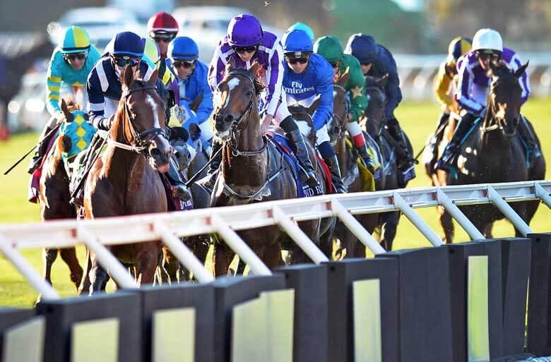 Florida Derby Horse Racing Betting Odds Cheat Sheet
