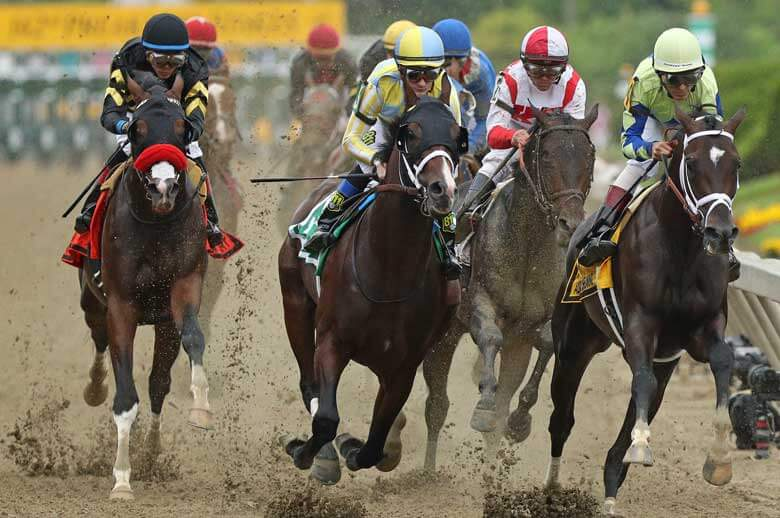 Preakness Stakes betting odds horse-by-horse preview and picks