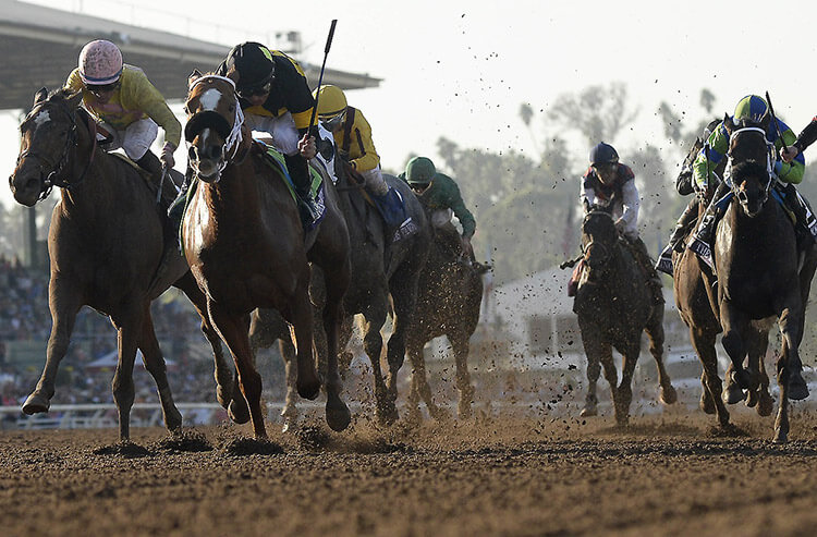 Xpressbet Race of the Week and $100 betting strategy: San Gabriel Stakes at Santa Anita Park