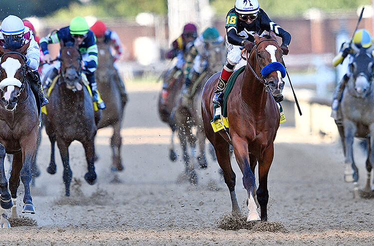 Preakness betting help i bet you wont share this jesus on your wall