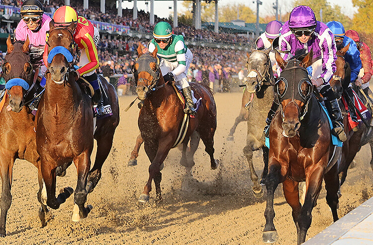 nhl betting pick of the day horses