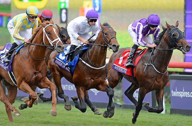 Horse Racing Prediction