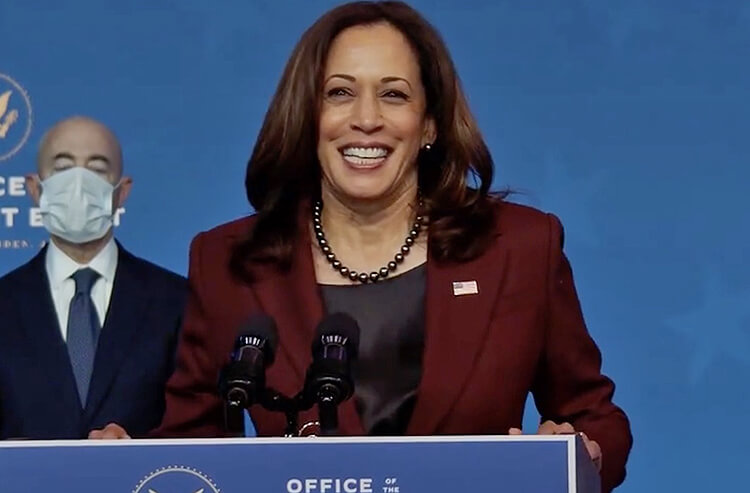 Odds to Win the 2024 US Presidential Election: Harris on Top